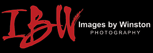 Images by Winston Photography - Atlanta's Best Wedding Photography